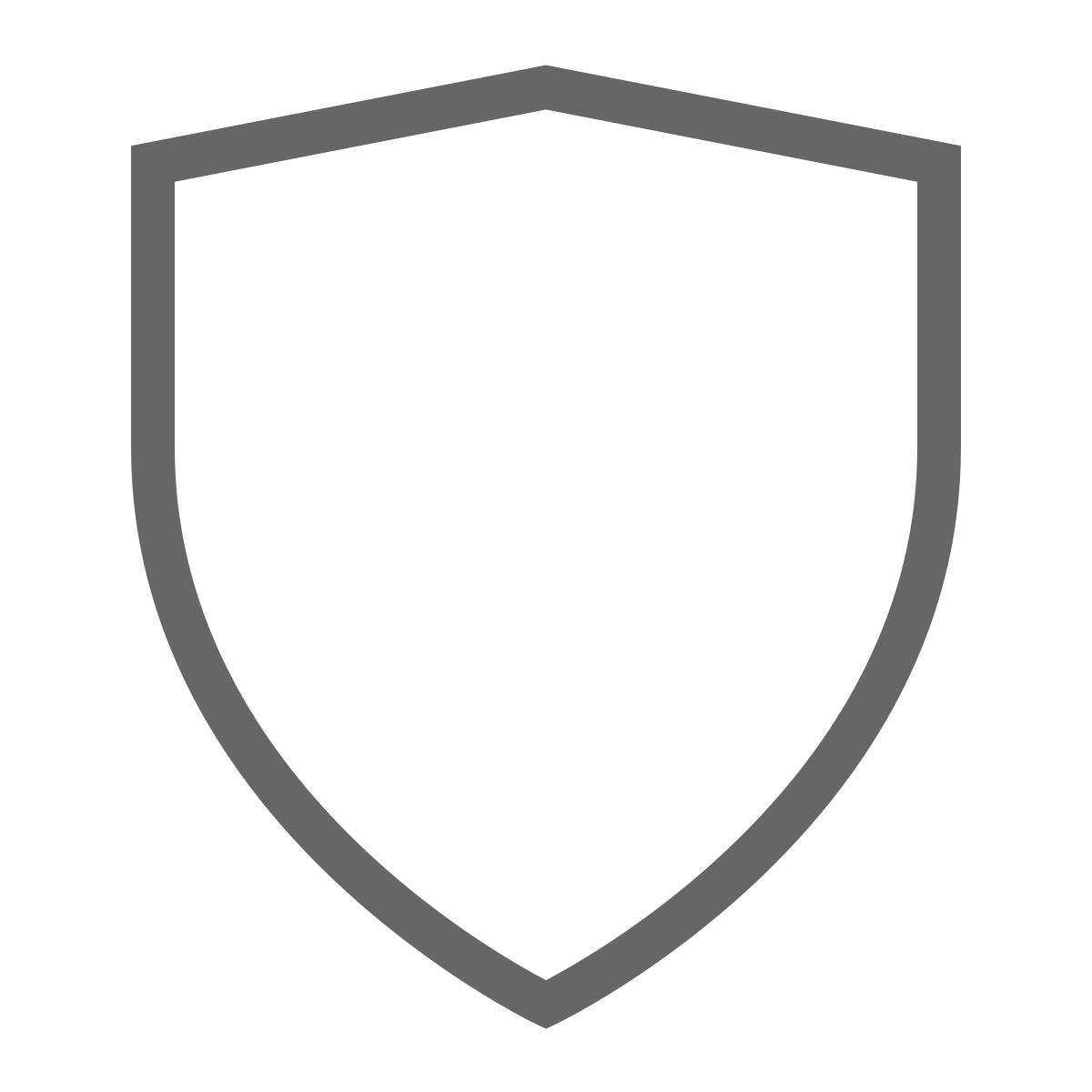 noun_Shield_305036_666666opQrCMlelpv1E